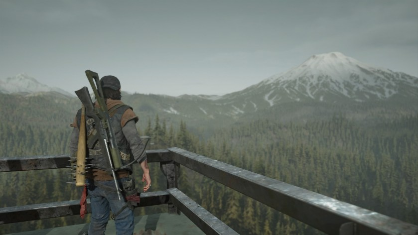 DAYS GONE SCREENSHOT 2.jpg